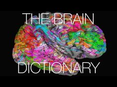 Word Meanings 'Light Up' Outer Layer Of Brain   : Shots - Health News : NPR