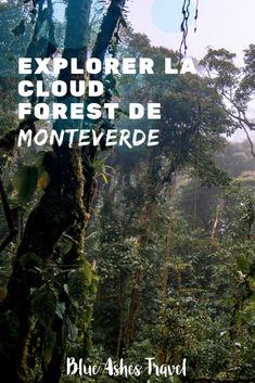 Explorer la cloud forest de Monteverde Monteverde, Costa Rica, Surf, Blue Ash, Road Trip Destinations, Blog Voyage, Clouds, France, Explore