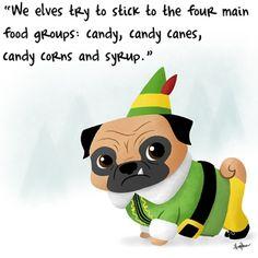 Buddy Elf sidekick. #pug #pugs #funny #cute #holidays #elf #popculture #christmas