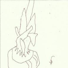 Balkonblumen (c) Zeichnung von Susanne Haun