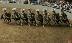 charros de mexico | Mexico Charros Photo,Mexico Charros Pictures, Stills, Mexican cowgirls ...