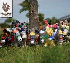 A herd of knitted woolley donkeys - get the free knitting pattern to knit a donkey that helps a donkey sanctuary!
