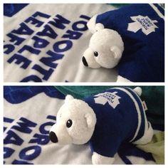Toronto Maple Leaf Carlton pillow pet bear! Toronto Blue Jays, Toronto Maple Leafs, Animal Pillows, Nhl, Hockey, Snoopy, Bear, Sports, Hs Sports