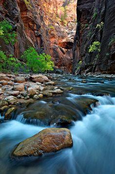 Rapid Radiance - Zion National Park, Utah by Shane McDermott