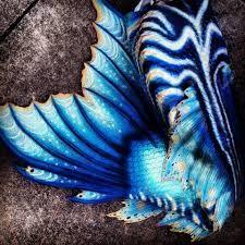 merbella studios full silicone mermaid tail - Google Search