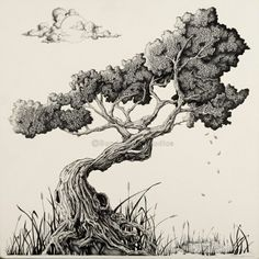 trees drawing Bonsai Tree artwork out of Asheville, Nc. The perfect gift idea as . Bonsai Tree artwork out of Asheville, Nc. The perfect gift idea as . Tree Drawings Pencil, Ink Drawings, Drawing Trees, Drawings Of Trees, Realistic Drawings, Drawing Art, Bonsai Tree Tattoos, Japanese Bonsai Tree, Tree Sketches
