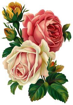 tubes fleurs - Page 47 Clip Art Vintage, Victorian Flowers, Vintage Flowers, Vintage Floral, Vintage Illustration, Botanical Illustration, Decoupage Vintage, Decoupage Paper, Arte Floral
