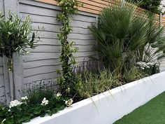 Garten Dekoration Render walls planting small garden design painted fence London How To Choose a Sto Small Garden Fence, Fenced Vegetable Garden, Diy Garden, Backyard Fences, Small Garden Design, Garden Fencing, Backyard Landscaping, Small Garden Wall Ideas, Backyard Designs