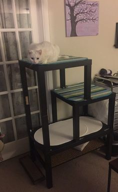 Cat tree from lack tables Ikea