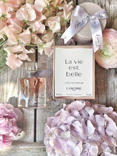 perfume and lotion organization Perfume Logo, Perfume Scents, Perfume Oils, Perfume La Vie Est Belle, Rose Gold Aesthetic, Perfume Display, Perfume Making, Dolce E Gabbana, Cosmetics & Perfume
