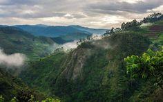 Günstige Flüge nach Ruanda
