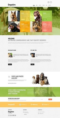 Who here likes it???   Dog Responsive Website Template CLICK HERE! live demo  http://cattemplate.com/template/?go=2hfoenB