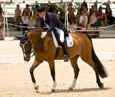 In anticipation of the Olympic debut of Rafalca, Ann Romney's dressage horse, Vetstreet compiled 10 must-know facts for newbie fans about the suddenly trendy equestrian sport.