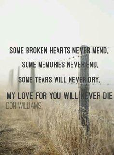 Don Williams - Some Broken Hearts. Country lyrics