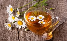 Download wallpapers tea with chamomile, glass cup, daisy petals, cup of tea