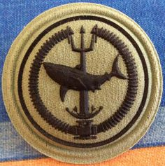 Attack Diver II Navy Training, Army Patches, Us Navy Seals, Military Special Forces, Military Insignia, Defence Force, African Countries, Africans, Scouts