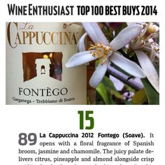 FONTEGO 2012  is TOP 100 BEST BUYS 2014  http://www.lacappuccina.it/en/fontegos-awards/