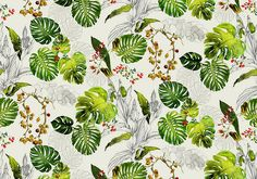 Paradise Collection - Tropical Fabrics