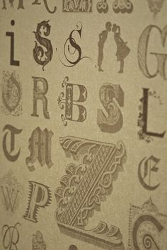 Barneby Gates Typecase Wallpaper