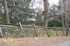 One of a few different types of traditional stone wall/fencing to be found in the countryside.  Virginia stone fence | by Kellsboro