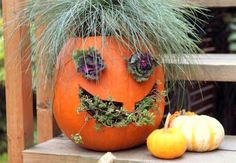 a Jack o lantern planter with grass ornamental kale and hens and chicks