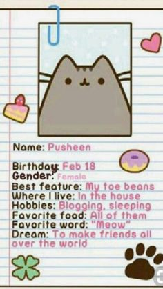 Pusheen !!!!!!! Her WHOLE LIFE WRITTEN ON A PAPER !!!!!!!!!