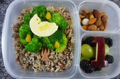Partridge in a Pear Tree Bento