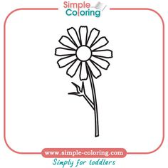 chamomilla coloring pages