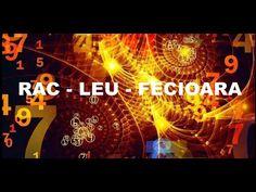 Amprenta astrala a lunii MAI pentru zodia RAC - LEU- FECIOARA - YouTube Rac, Optimism, Chakra, Zodiac, Neon Signs, Youtube, Chakras, Horoscope, Youtubers