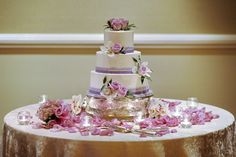 Google Image Result for http://www.iconicaphotography.com/wp-content/uploads/2011/03/purple-ribbon-wedding-cake.jpg