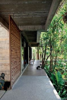 home Soi Wat Umong House - Tropical Architecture There Is Nothing Like A Good Father Article Body: F Modern Tropical House, Tropical Patio, Tropical House Design, Tropical Houses, Tropical Forest, Tropical Decor, Tropical Architecture, Futuristic Architecture, Residential Architecture