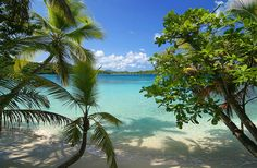 My most favorite place on earth, Oppenheimer Beach, St John, USVI.  I want to escape and live there!