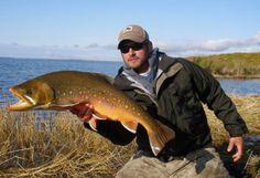 fly fishing for dolly varden in Alaska