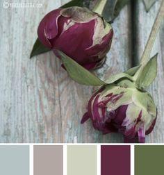 Plum and sage color scheme
