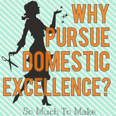 Why Pursue Domestic Excellence? Defending the DIY Blogger Retro Re-Pin Party 26