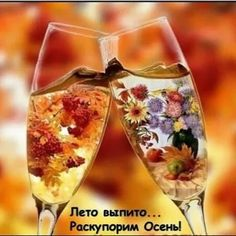 Creative Picture Ideas, Happy Monday Morning, Beautiful Nature Wallpaper, Its A Wonderful Life, Wine Glass, Tableware, Autumn, Emoticon, Picnic