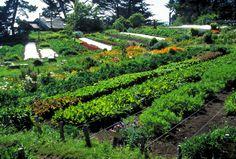 Les secrets du monde moderne: Jardiner autrement: concevoir un jardin en permaculture