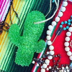 Cactus Freshie