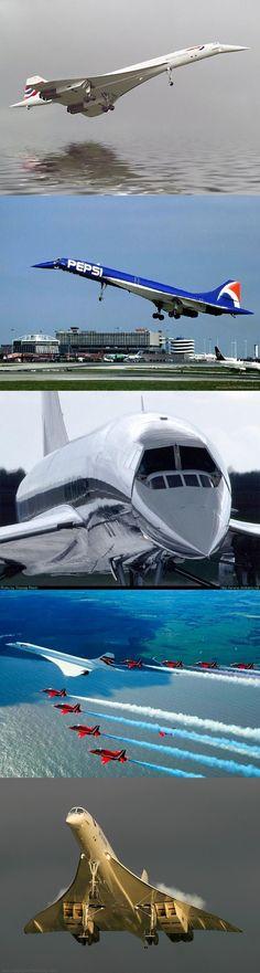 Amazing Concordes.