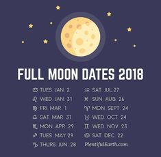 Moonsun fake dating au