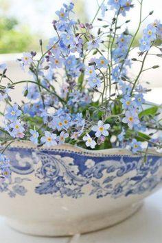 #Spring #flowers.