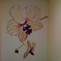 Wall mural of Orchid. I painted