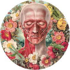 Juan-Gatti-Ciencias-Naturales-6✖️More Pins Like This One At FOSTERGINGER @ Pinterest ✖️Fosterginger.Pinterest.Com.✖️No Pin Limits✖️