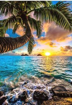 """Splash"" - Lanikai, Kailua, Oahu   Hawaii"