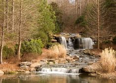 13 Magical Spots In Alabama Straight Out Of A Fairy Tale Great Places, Beautiful Places, Places To Visit, Vestavia Hills, Magical Forest, Sweet Home Alabama, Dream Vacations, Family Vacations, Future Travel