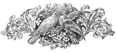 lovebirds+vintage+wedding+graphic--graphicsfairybw.jpg 1,500×690 pixels