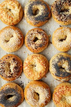 New York Bagels - The Candid Appetite