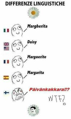 Finnish! The character looks so angry, but despite how long some words are, it's a beautiful language!