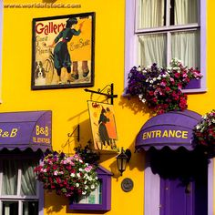 Stock Photo titled: Ireland - Kinsale - Purple Canopy Yellow Wall, unlicensed use prohibited
