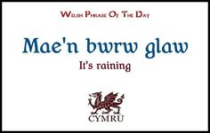 """Welsh-were all words need more """"Ls"""" & """"Ys"""" Welsh Phrases, Welsh Words, Learn Welsh, Welsh Language, Phrase Of The Day, Miss You Mom, Wales Uk, Cymru, Always Learning"""